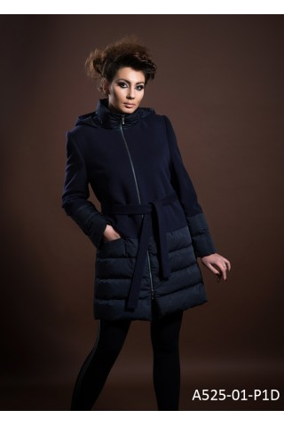 Coat with goose down filling and hood